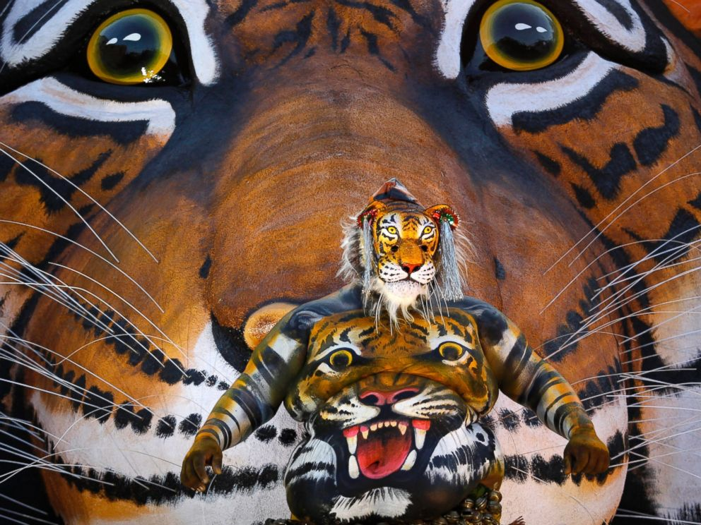 PHOTO: An Indian artist with his body painted with the likeness of a tiger dances before a mural of a tiger during the Pulikali or Tiger Dance procession in Thrissur, India, Aug. 31, 2015.
