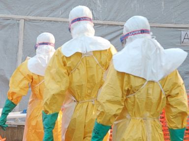How Ebola Virus Spreads From Sick Animals And Among Humans