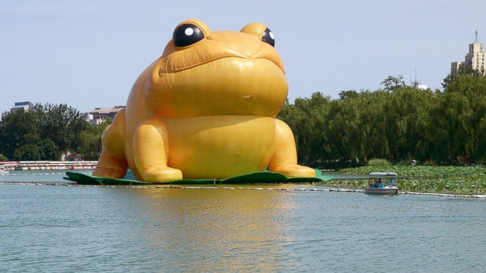 "PHOTO: People ride in a boat near a 70-foot-tall inflatable ""big golden toad"" by Chinese artist Guo Yongyao, displayed at Yu Yuan Tan Park in Beijing, July 21, 2014."