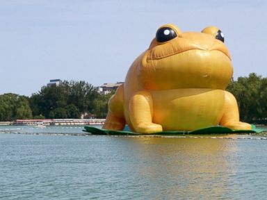 Inflatable Frog Censored After Comparisons to China's Ex-Leader