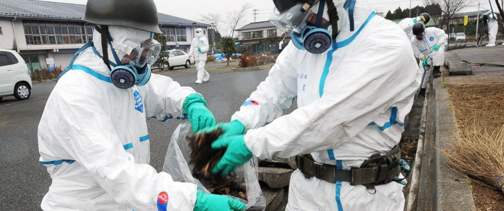 PHOTO: Japans Self Defense Force soldiers are pictured collecting fallen leaves from a gutter as they started a decontamination mission in Namie, in Fukushima Prefecture, Japan on Dec. 8, 2011.