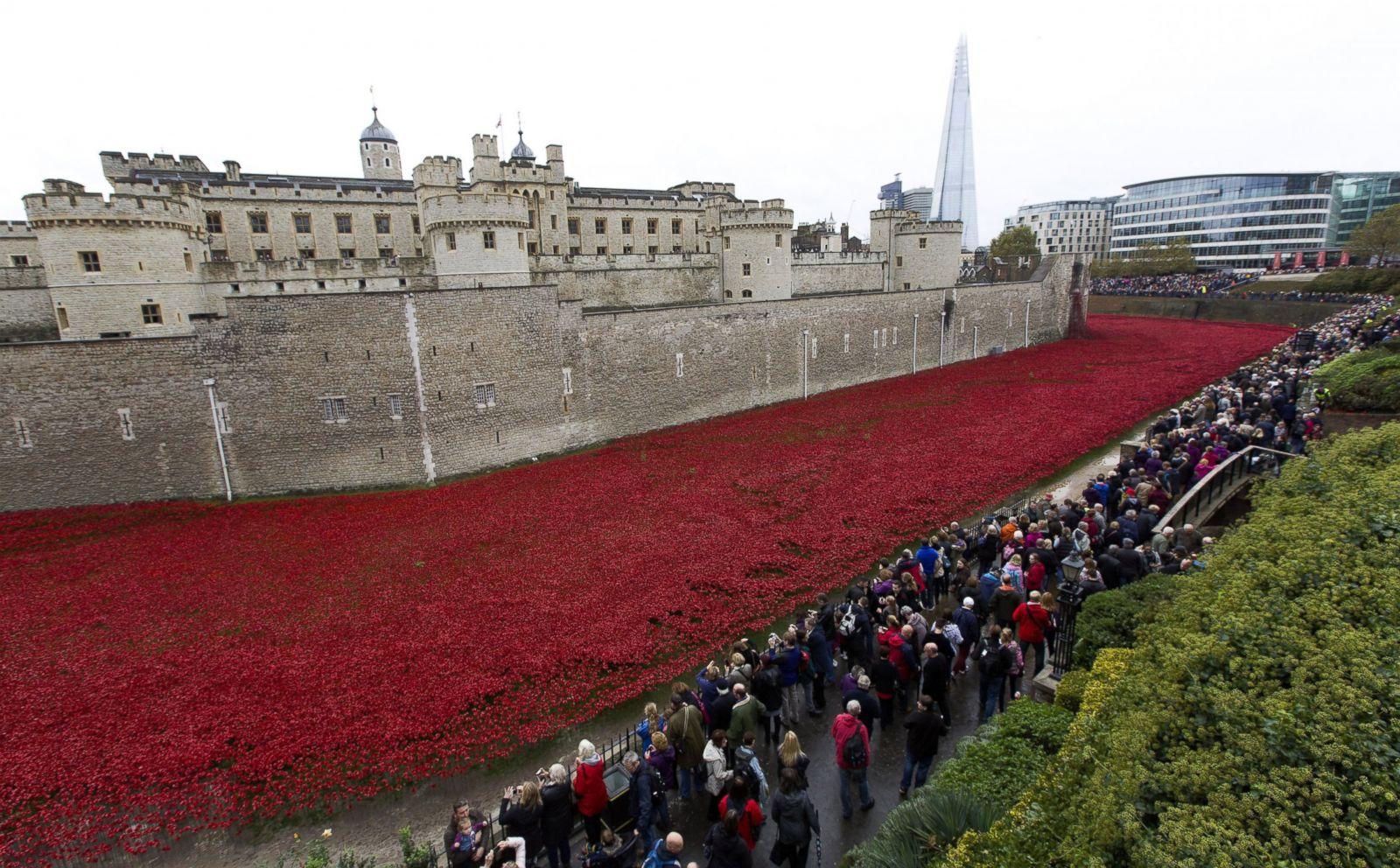 tower of london u0027s evolving poppy art installation photos abc news