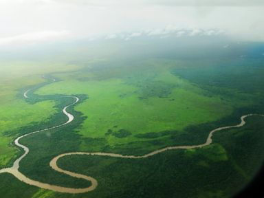 PHOTO: A river as seen from the air in West Kalimantan.