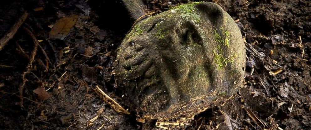 """PHOTO: A """"were-jaguar"""" effigy, likely representing a combination of a human and spirit animal, is part of a still-buried ceremonial seat, or metate, one of many artifacts discovered in a cache in ruins deep in the Honduran jungle."""