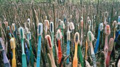 PHOTO: Washed Up: Transforming a Trashed Landscape