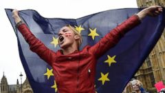 Thousands Protest Against Brexit in London's Trafalgar Square ..., From GoogleImages
