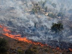 The Latest: Fire along Croatian coast mostly under control