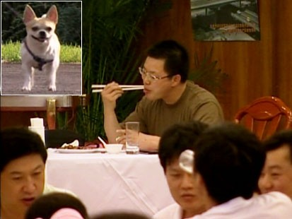 Picture of a dog and man eating.