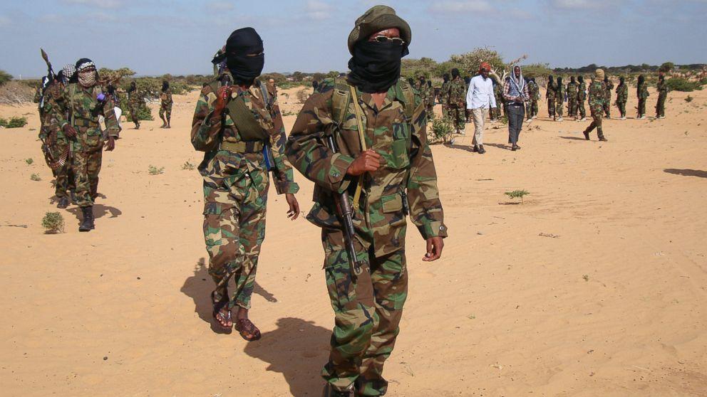 US airstrike kills 'several' al-Shabab militants in Somalia