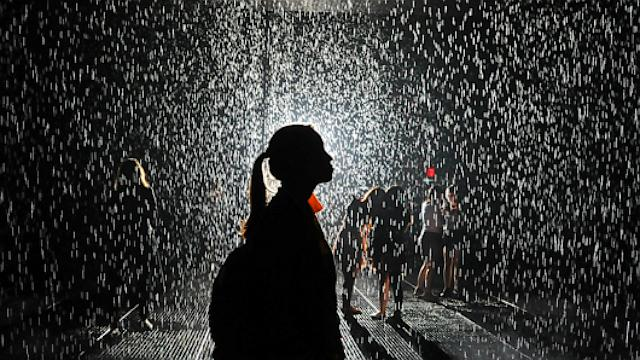 A woman stands in the new 'Rain Room' installation at the Museum of Modern Art (MoMA) in New York, May 17, 2013. The 5,000 square-foot installation creates a field of falling water that stops in the area where people walk through which allows them to remain dry.