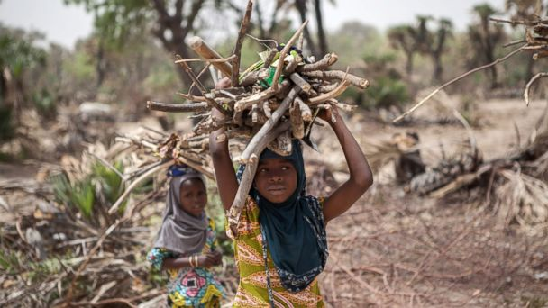 PHOTO: A young girl carries fire wood on the outskirt of the town of Damasak in North East Nigeria, April, 25 2017, as thousands of Nigerians, who were freed in 2016 by the Nigerian army from Boko Haram insurgents, are returning to their homes in Damasak.