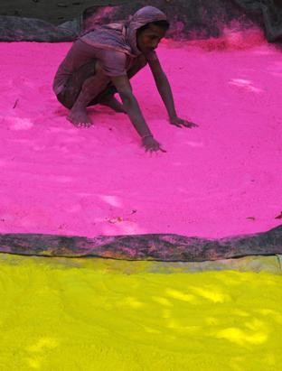 The Holi Festival marks the beginning of Spring for religious Hindus