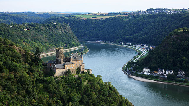 PHOTO: Castle Katz and Loreley in the U