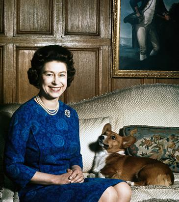 Queen Elisabeth's Corgis
