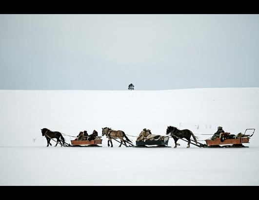 2013 Sony World Photography Awards Professional Shortlist