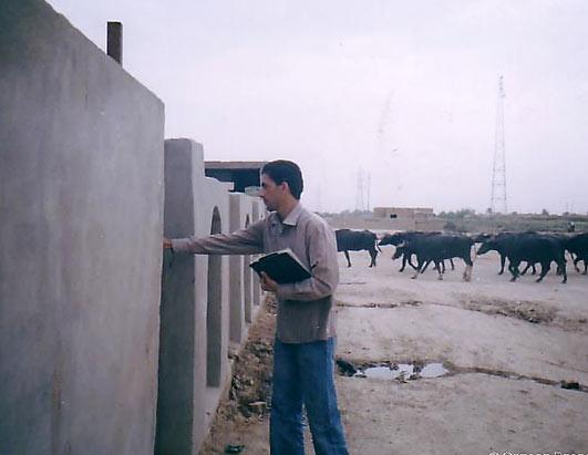 Iraq - Where Things Stand