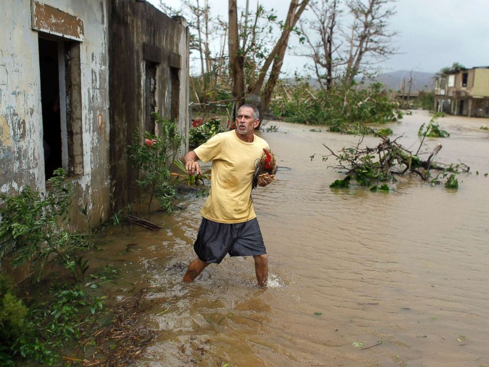 PHOTO: A man rescues a rooster from his flooded garage as Hurricane Maria hits Puerto Rico in Fajardo, on Sept. 20, 2017.