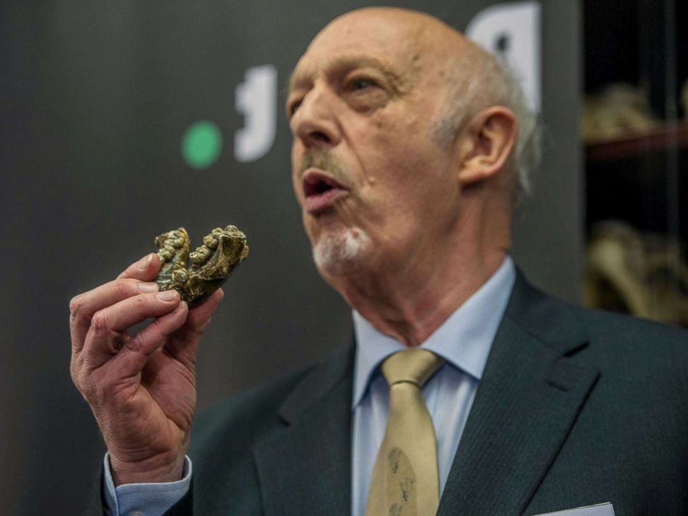 PHOTO: Palaeoanthropologist Professor Ron Clarke unveiled for the first time to the public, the Little Foot fossilised hominid skeleton at the University of the Witwatersrand in Johannesburg, Dec. 6, 2017.