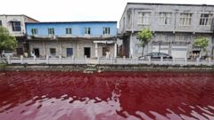 Chinese River Turns Blood Red Overnight