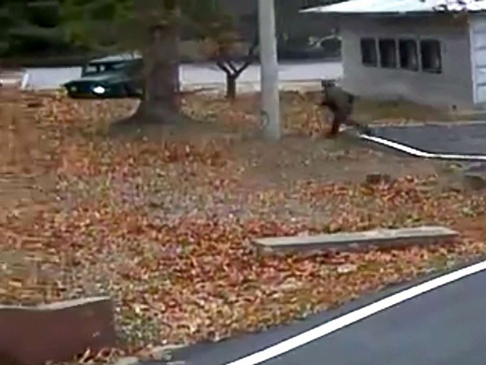 PHOTO: This screengrab made from video footage released by the United Nations Command, Nov. 22, 2017, shows a North Korean soldier running back to the north side of the Joint Security Area of the Demilitarized Zone while in pursuit of a defector.