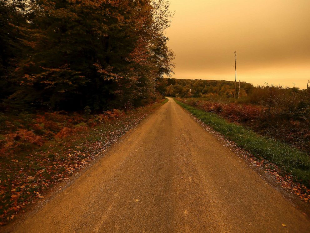 PHOTO: The landscape turns orange and yellow over a road in Brittany, Oct.16, 2017 in Chasne-sur-Illet, western France.
