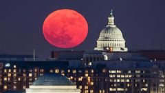 'PHOTO: A 'supermoon' rises behind the US Capitol and the Jefferson Memorial, in Washington, DC, viewed from Arlington, Virginia, Dec. 3, 2017.' from the web at 'http://a.abcnews.com/images/International/supermoon-washington-epa-thg-171204_16x9t_240.jpg'
