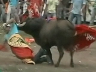 Watch: Colombia Bullfight: At Least 30 People Gored