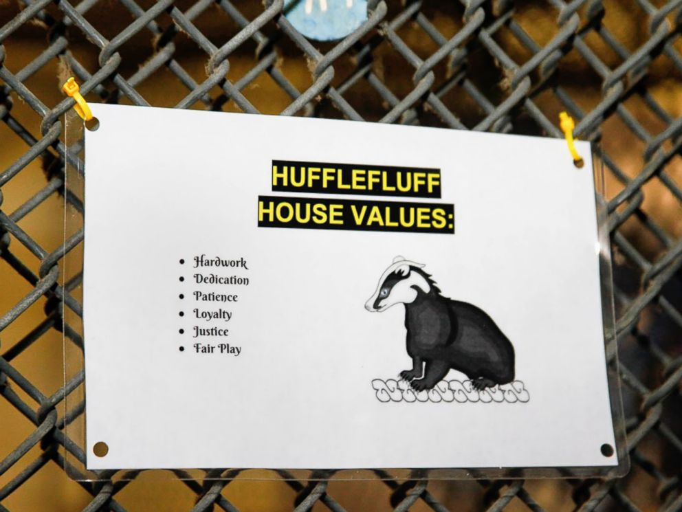 PHOTO: A sign at the Pet Alliance of Greater Orlando shows the values of the Hufflefluff house.