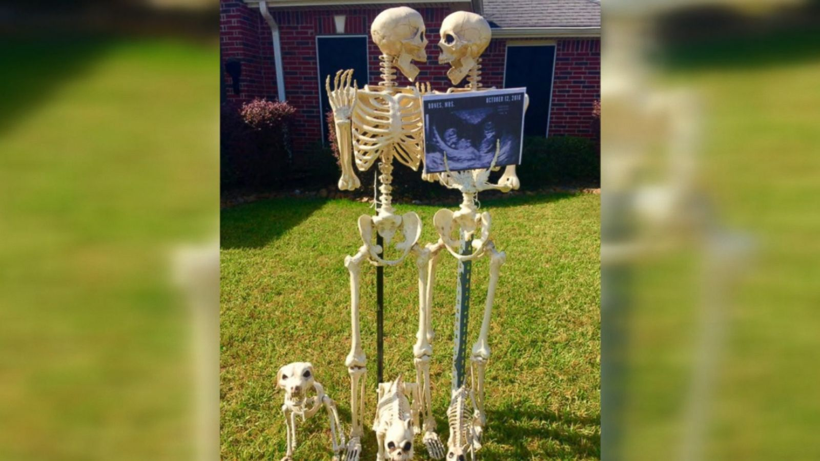 Amy B. Moses of Lumberton, Texas poses her skeleton decorations into various scenes each Halloween season.