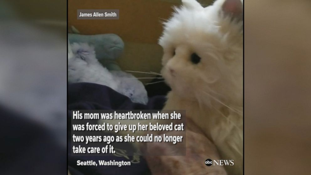 Man gives his mother a robotic cat as a birthday gift after she was forced to give up her cat due to dementia and mobility issues.