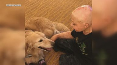 'Owen Mahan, 10, flew from Indiana to Arizona to meet Chi Chi, a rescue golden retriever.' from the web at 'http://a.abcnews.com/images/Lifestyle/171110_vod_orig_boydogamputees_update_mix_16x9_384.jpg'