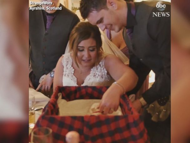 WATCH:  Bride gets puppy surprise at wedding