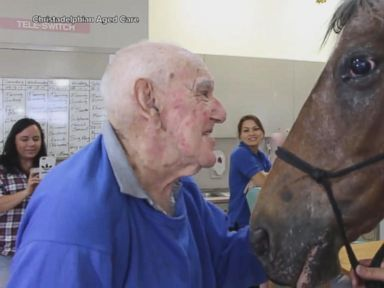 WATCH:  Horse visits retirement home in touching video