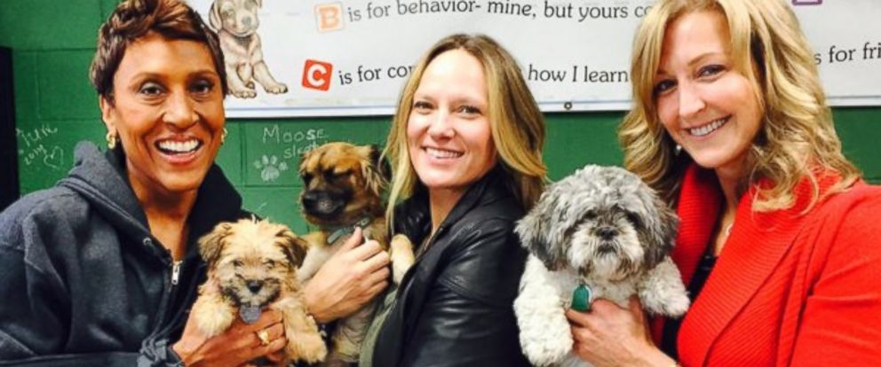 PHOTO: Robin Roberts, Amber and Lara Spencer pose with dogs at New Yorks North Shore Animal League America.