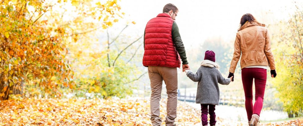 PHOTO: Family holding hands and walking in autumn park.