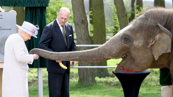 PHOTO: Queen Elizabeth II and Prince Philip, Duke of Edinburgh feed Donna the elephant as they visit the Elephant Centre at the ZSL Whipsnade Zoo, April 11, 2017, in Dunstable, U.K.