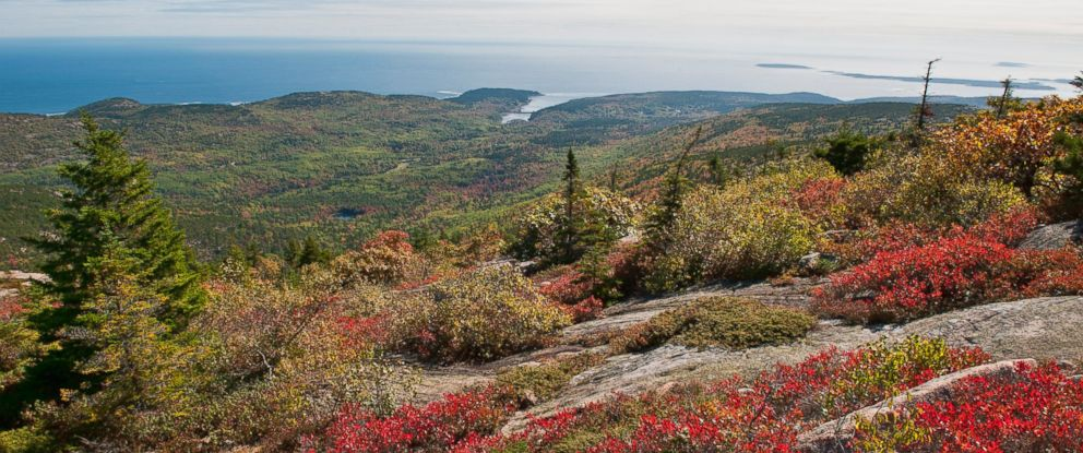 PHOTO: Acadia National Park in Maine, May 10, 2010.