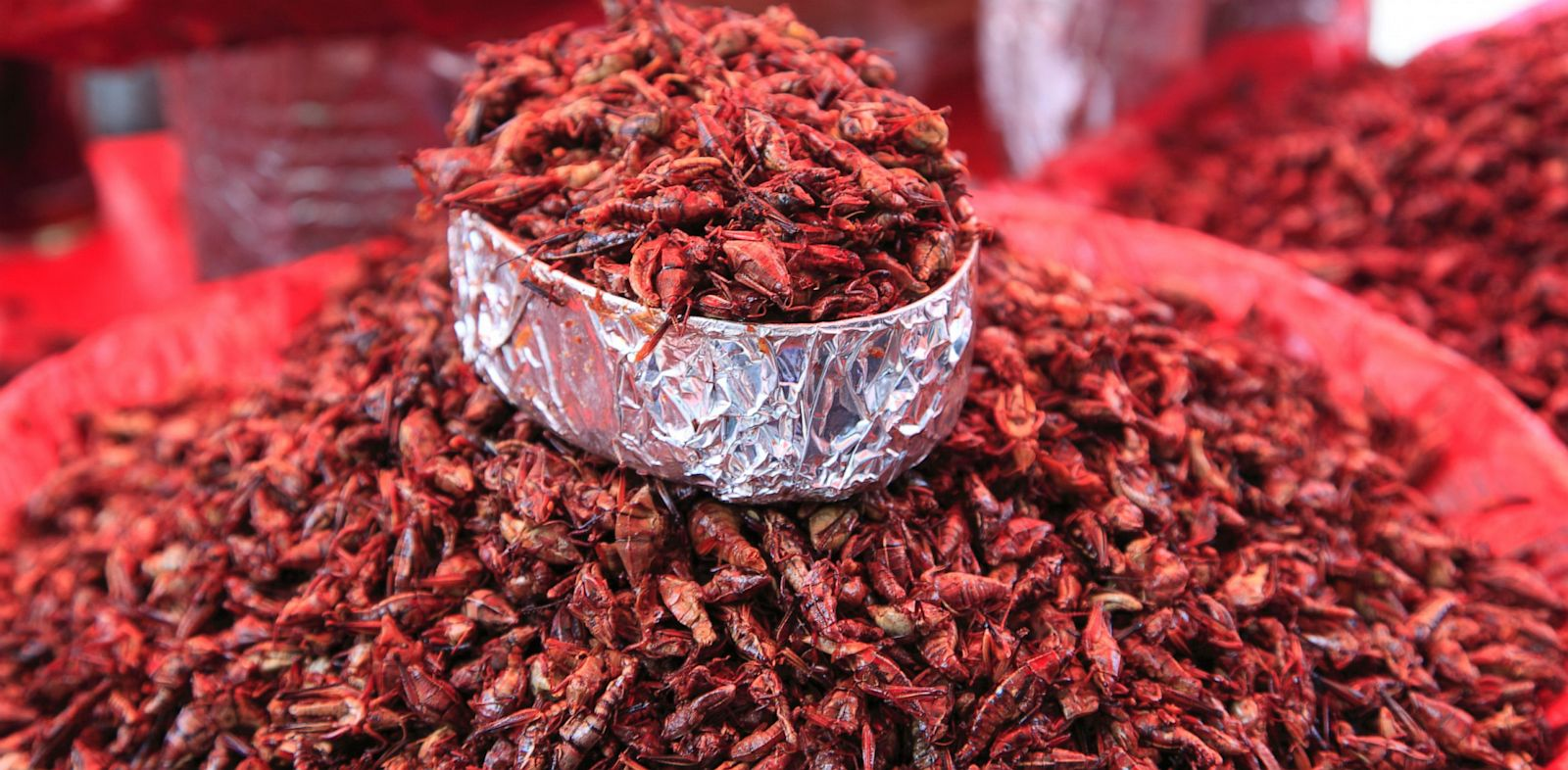 PHOTO: Grasshoppers at a market near Oaxaca, Mex.