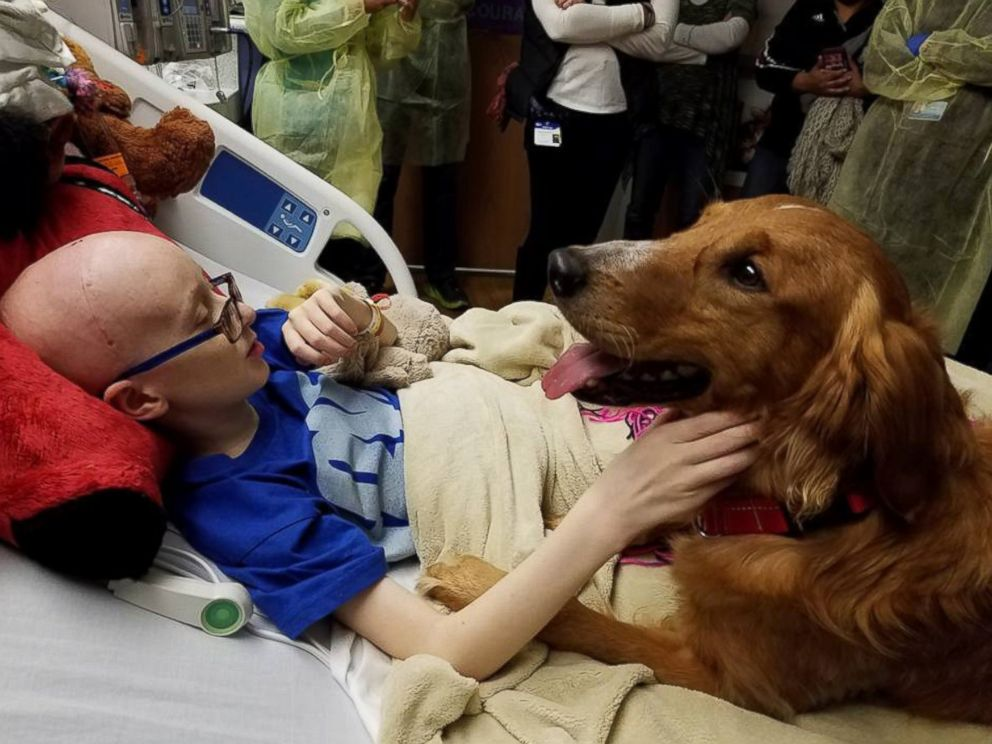 PHOTO: Brooke Mulford was granted wish of seeing inspiration film A Dogs Purpose and even got a visit from screenwriter Cathryn Michon and the films star dog, Trip.