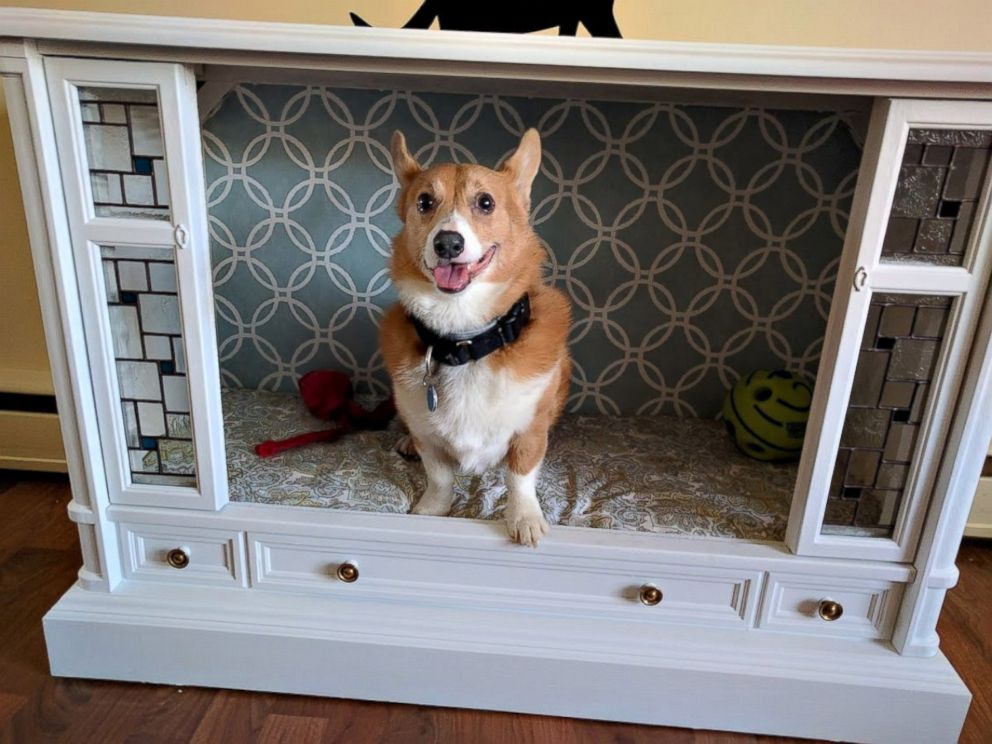 PHOTO: Jonathan and Lisa, of Havre de Grace, Maryland, turned a retro TV into a chic doggy paradise with stained glass windows.