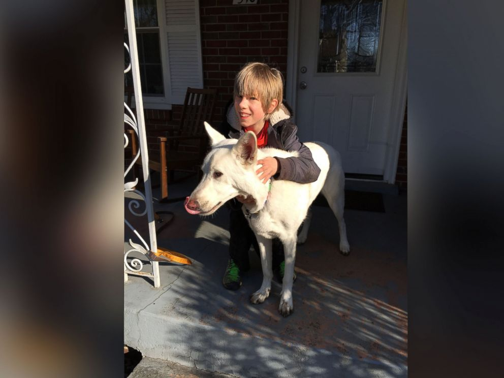 PHOTO: Lennox Goebel, 11, was overcome with tears as he was surprised with the return of his neighbors dog, Bogart, after spending a year in California.