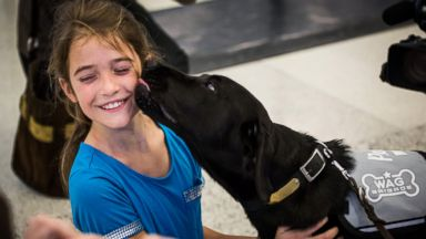 PHOTO: The WAGS program at SFO brings therapy dogs to the airport.