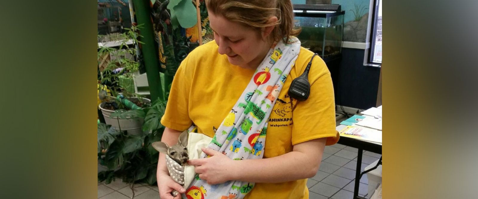 PHOTO: Zookeeper Amanda Dukart became the mother to a 4-month-old kangaroo after its mother died unexpectedly about a week ago at the Chahinkapa Zoo in North Dakota. She carries the joey, named Barkly, around in a pouch 24/7.