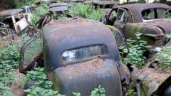 PHOTO: Car Graveyard in Belgian Forest