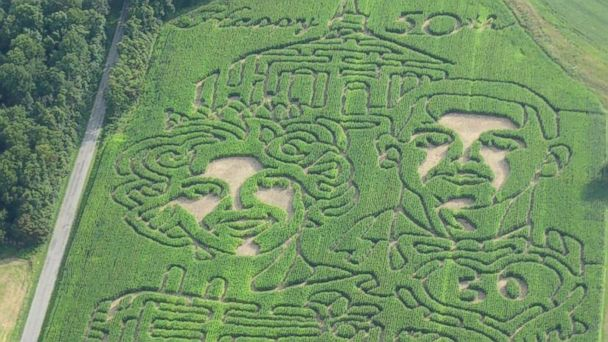 HT cornmaze derthicks 16x9 608 Man Surprises Wife With 50th Anniversary Corn Maze of Their Wedding Photo
