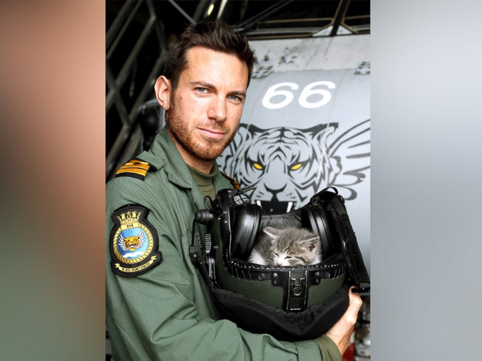 PHOTO: The kitten survived a 300-mile journey hiding inside the bumper of a UK Royal Navy helicopter pilots car.