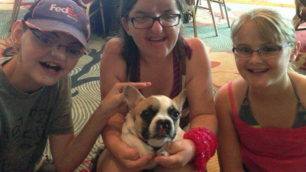 PHOTO: french bulldog, facial deformities