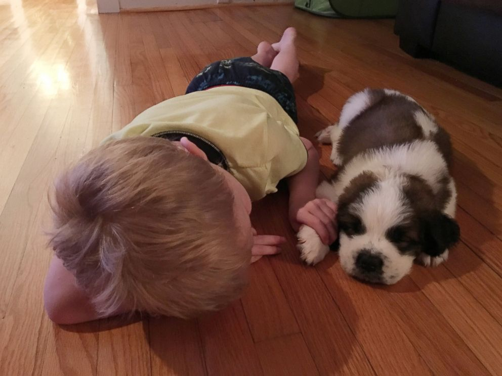 Boy And Dog Pictures Go Viral