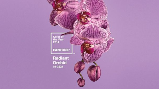 HT pantone color of the year radiant orchid sk 131205 16x9 608 And the 2014 Color of the Year is . . .