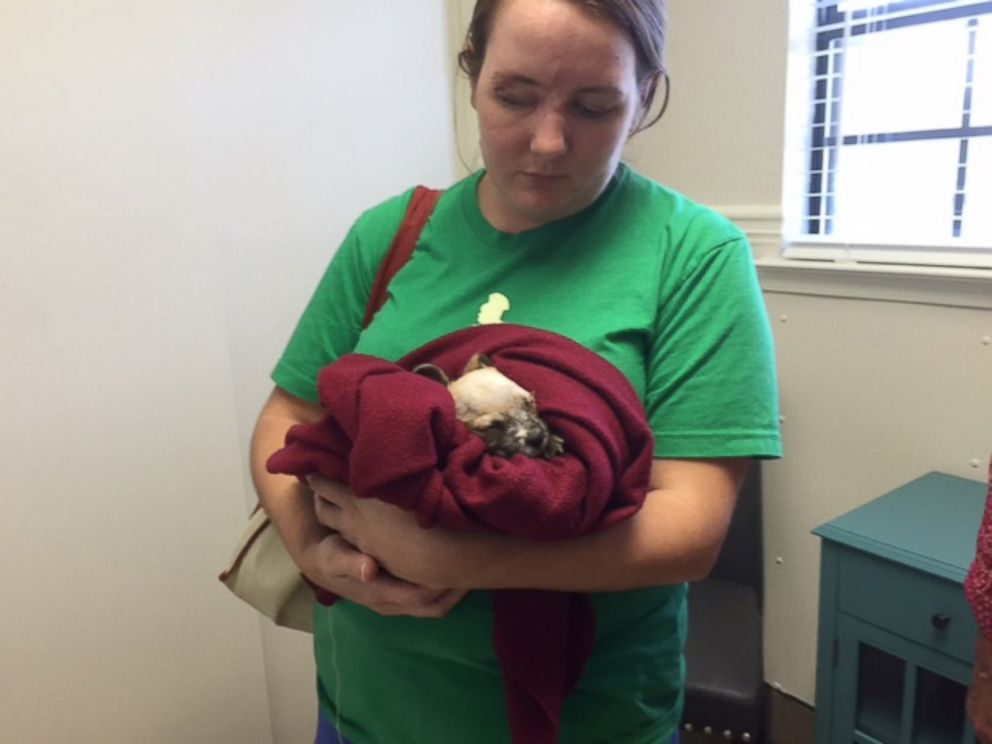 PHOTO: Maria Williamson and her puppy, Bear, are both missing one eye.